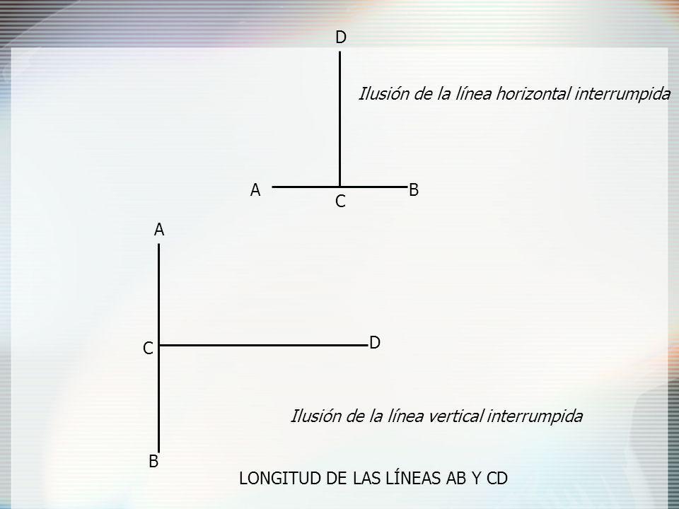 AB C D A B C D Ilusión de la línea horizontal interrumpida Ilusión de la línea vertical interrumpida LONGITUD DE LAS LÍNEAS AB Y CD
