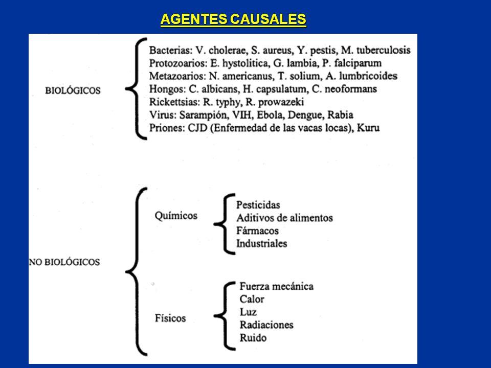 AGENTES CAUSALES