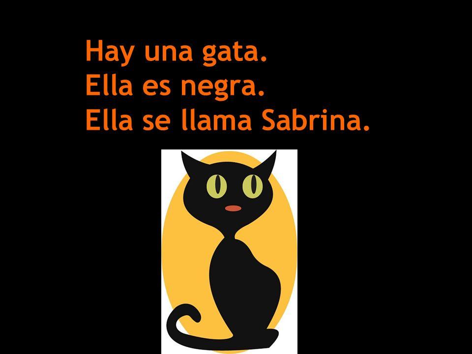 Hay una gata. Ella es negra. Ella se llama Sabrina.