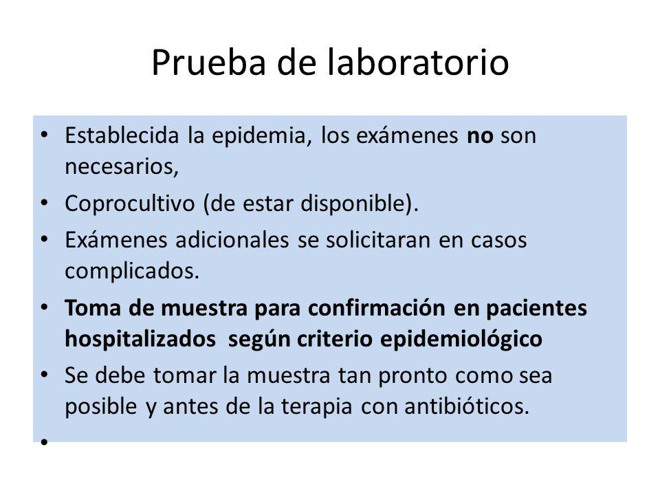 Establecida la epidemia, los exámenes no son necesarios, Coprocultivo (de estar disponible). Exámenes adicionales se solicitaran en casos complicados.