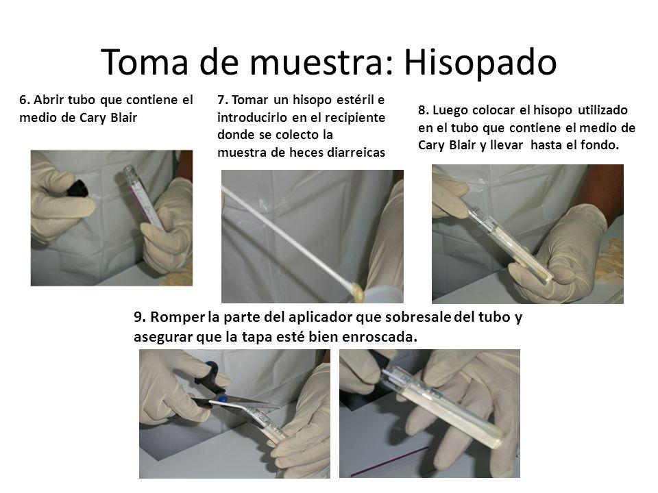 Toma de muestra: Hisopado 6. Abrir tubo que contiene el medio de Cary Blair 8. Luego colocar el hisopo utilizado en el tubo que contiene el medio de C