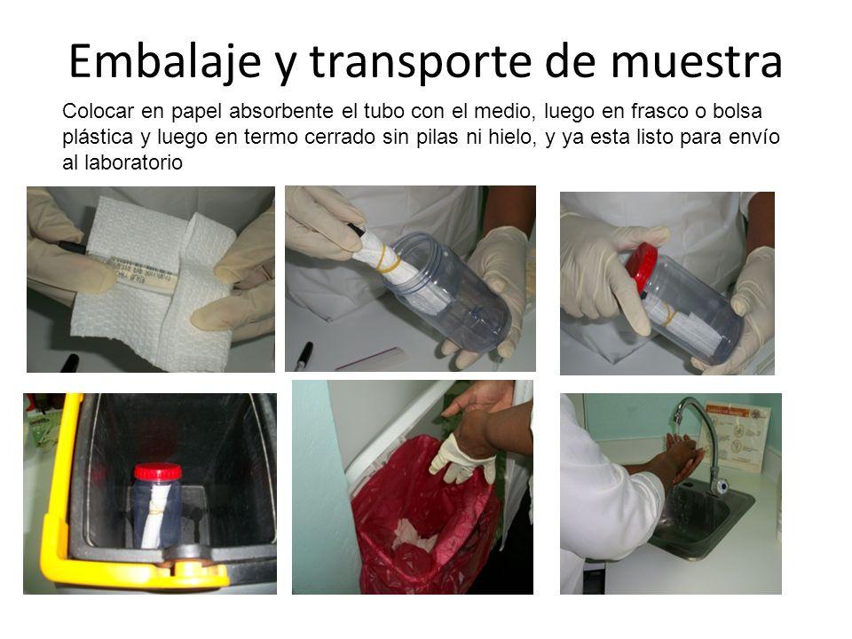 Embalaje y transporte de muestra Colocar en papel absorbente el tubo con el medio, luego en frasco o bolsa plástica y luego en termo cerrado sin pilas ni hielo, y ya esta listo para envío al laboratorio