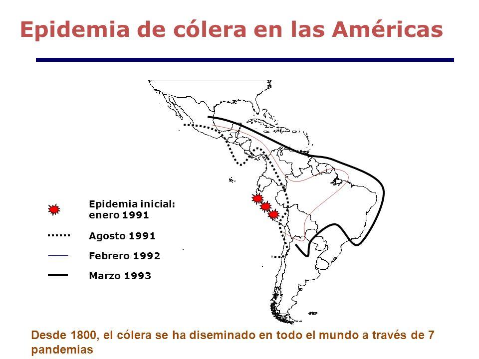 Epidemia inicial: enero 1991 Agosto 1991 Febrero 1992 Marzo 1993 Epidemia de cólera en las Américas Desde 1800, el cólera se ha diseminado en todo el mundo a través de 7 pandemias