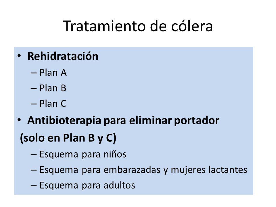 Rehidratación – Plan A – Plan B – Plan C Antibioterapia para eliminar portador (solo en Plan B y C) – Esquema para niños – Esquema para embarazadas y mujeres lactantes – Esquema para adultos Tratamiento de cólera