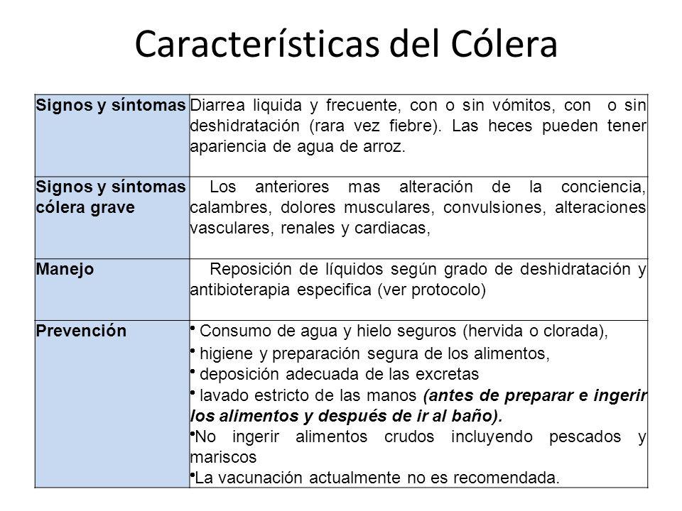 Características del Cólera Signos y síntomasDiarrea liquida y frecuente, con o sin vómitos, con o sin deshidratación (rara vez fiebre). Las heces pued