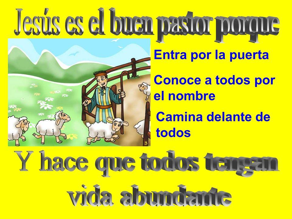 -Yo soy la puerta de las ovejas. Yo soy la puerta: quien entre por mí se salvará. Yo he venido para que todos tengan vida y la tengan abundante. PALAB