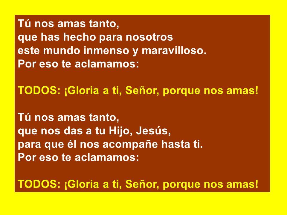 s.- El Señor esté con vosotros. TODOS: Y con tu espíritu. s.- Levantemos el corazón. TODOS: Lo tenemos levantado hacia el Señor. s.- Demos gracias al