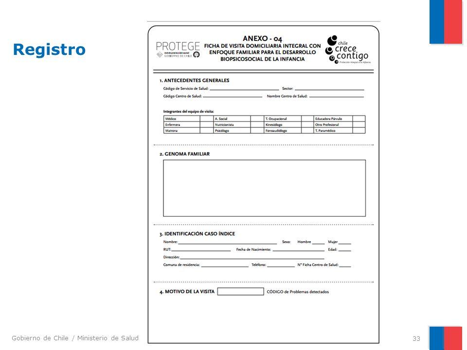 Gobierno de Chile / Ministerio de Salud Registro 33