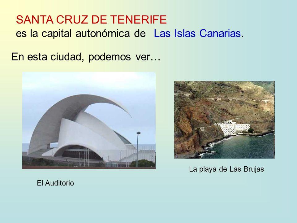 SANTA CRUZ DE TENERIFE es la capital autonómica deLas Islas Canarias.