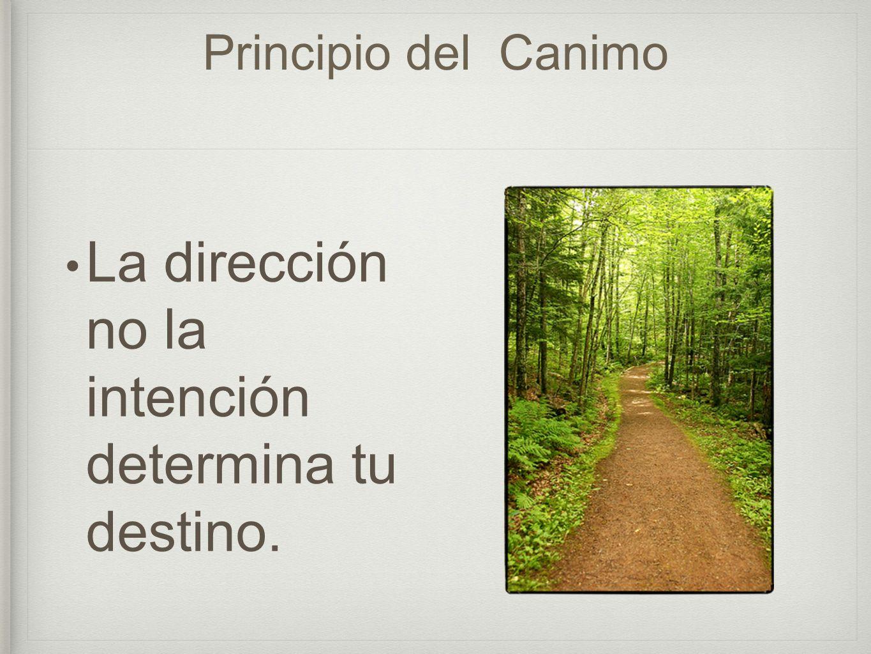 Principio del Canimo La dirección no la intención determina tu destino.