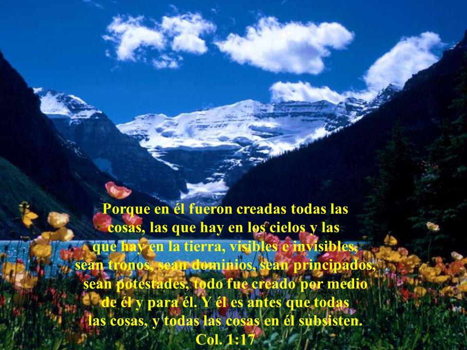 Jesucristo AUTOR Y CONSUMADOR DE LA FE. PRINCIPAL PIEDRA DEL ANGULO. PASTOR DE PASTORES. VID VERDADERA.