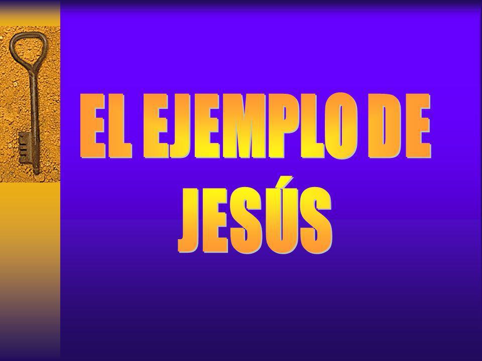 El miembro, se apoya en el pastor El discípulo apoya al pastor