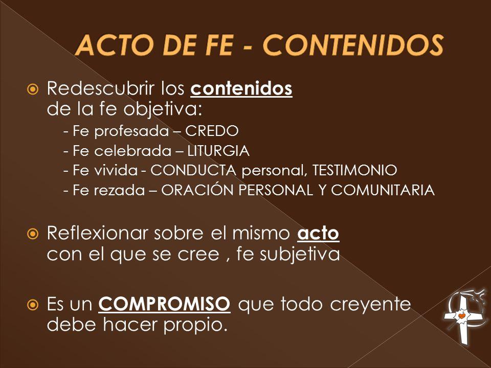 Redescubrir los contenidos de la fe objetiva: - Fe profesada – CREDO - Fe celebrada – LITURGIA - Fe vivida - CONDUCTA personal, TESTIMONIO - Fe rezada – ORACIÓN PERSONAL Y COMUNITARIA Reflexionar sobre el mismo acto con el que se cree, fe subjetiva Es un COMPROMISO que todo creyente debe hacer propio.