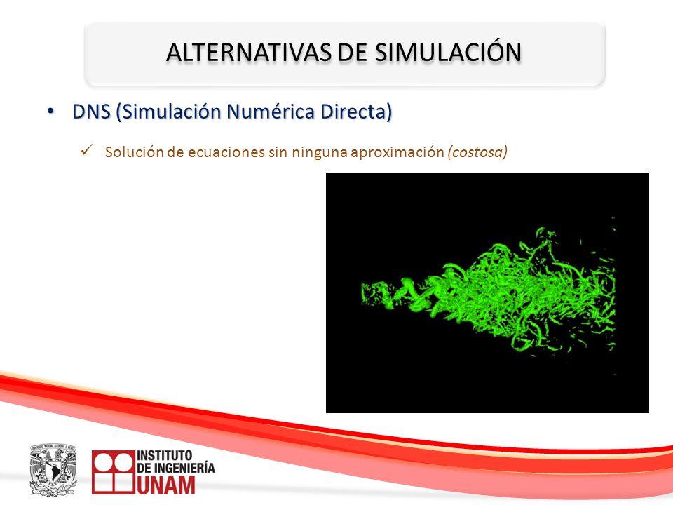 ALTERNATIVAS DE SIMULACIÓN DNS (Simulación Numérica Directa) DNS (Simulación Numérica Directa) Solución de ecuaciones sin ninguna aproximación (costos