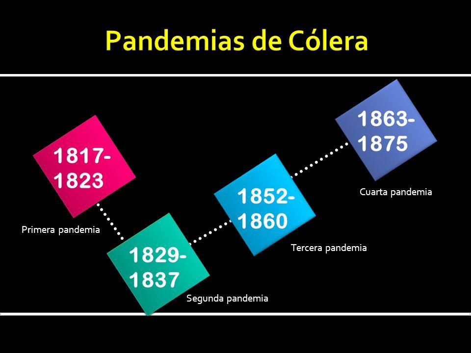 1817- 1823 1829- 1837 1852- 1860 1863- 1875 Segunda pandemia Tercera pandemia Cuarta pandemia Primera pandemia