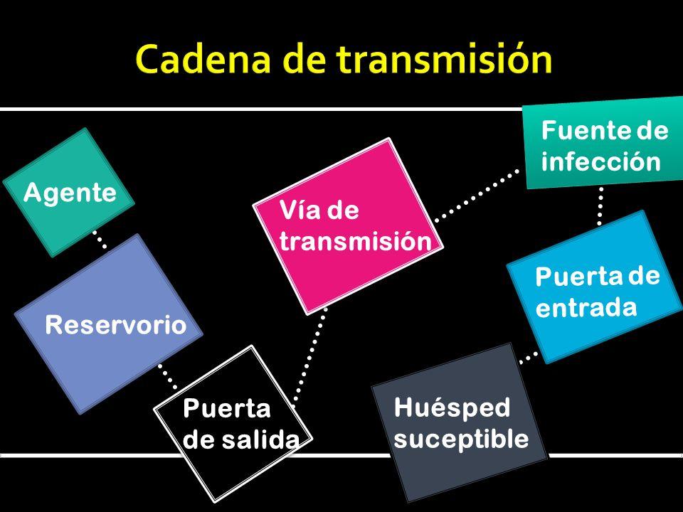Agente Reservorio Puerta de salida Vía de transmisión Fuente de infección Puerta de entrada Huésped suceptible