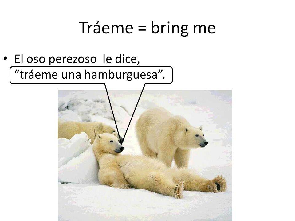 Tráeme = bring me El oso perezoso le dice, tráeme una hamburguesa.