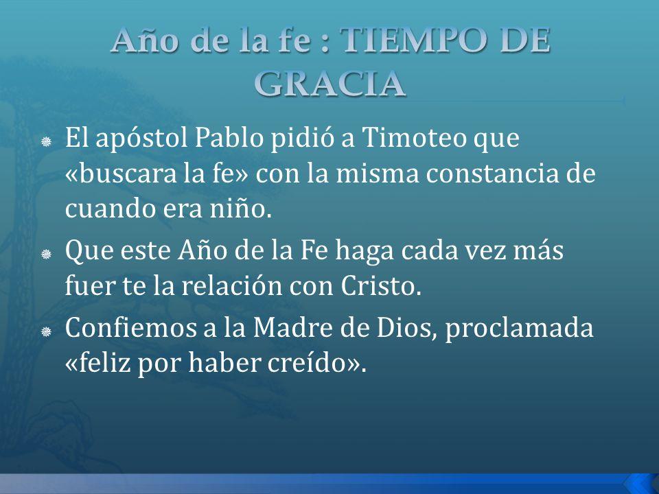 El apóstol Pablo pidió a Timoteo que «buscara la fe» con la misma constancia de cuando era niño. Que este Año de la Fe haga cada vez más fuer te la re