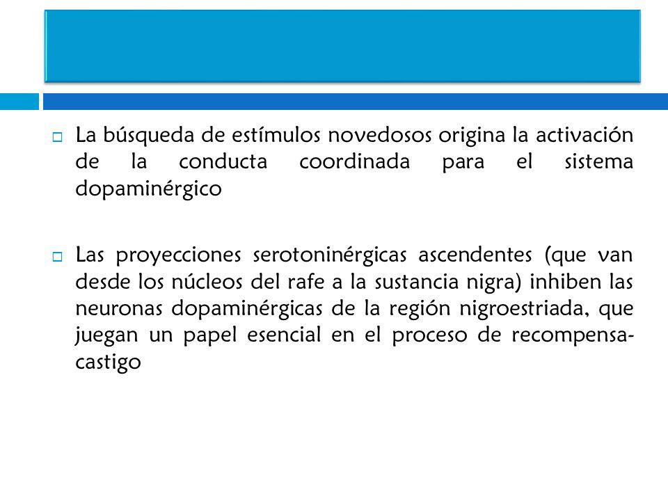 La búsqueda de estímulos novedosos origina la activación de la conducta coordinada para el sistema dopaminérgico Las proyecciones serotoninérgicas asc
