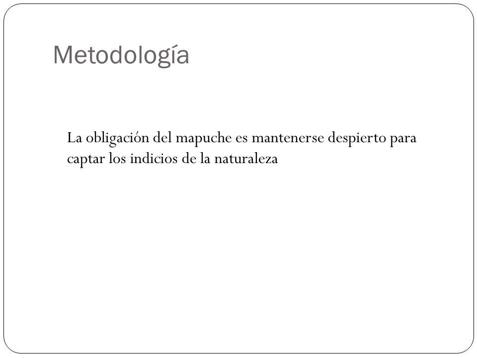 Metodología La obligación del mapuche es mantenerse despierto para captar los indicios de la naturaleza