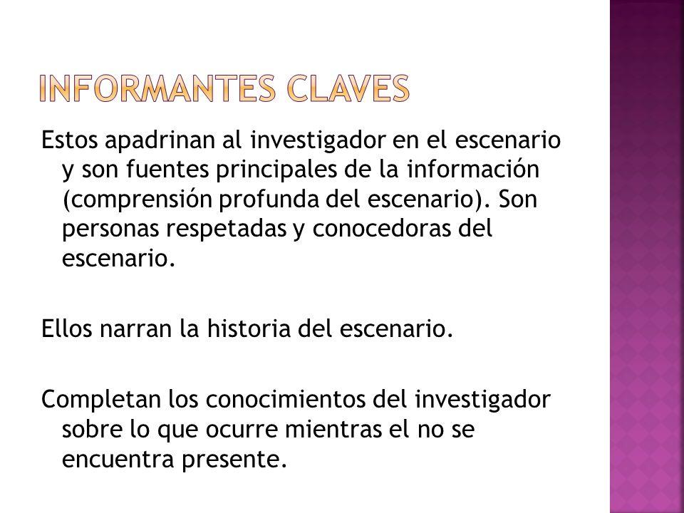 Estos apadrinan al investigador en el escenario y son fuentes principales de la información (comprensión profunda del escenario).