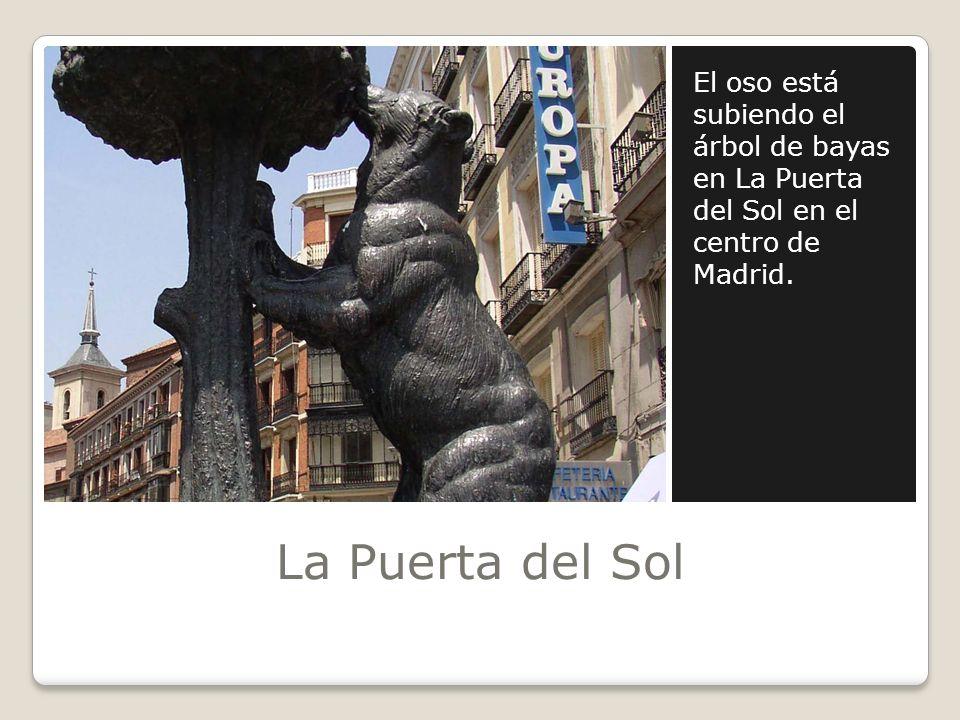 La Puerta del Sol El oso está subiendo el árbol de bayas en La Puerta del Sol en el centro de Madrid.
