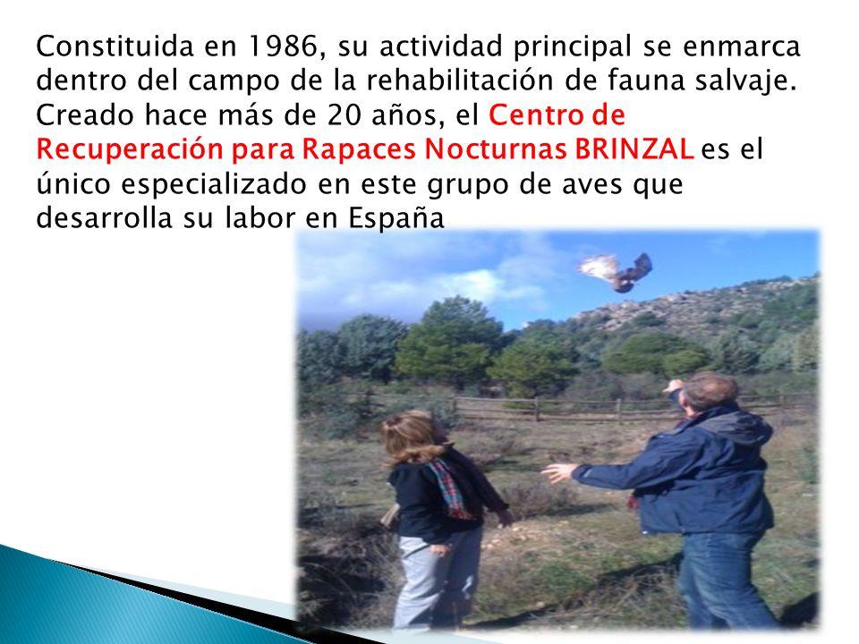 Constituida en 1986, su actividad principal se enmarca dentro del campo de la rehabilitación de fauna salvaje.