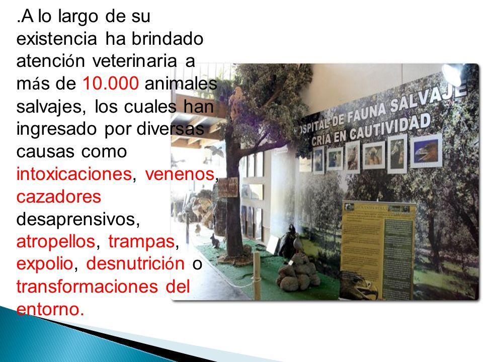 El objetivo principal del Centro de Recuperaci ó n de Fauna Salvaje es dar los cuidados necesarios a los animales que ingresan de forma que puedan ser liberados.