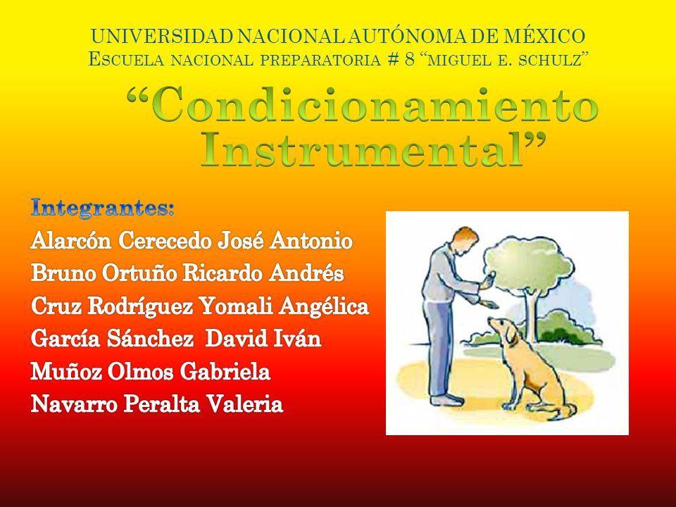 UNIVERSIDAD NACIONAL AUTÓNOMA DE MÉXICO E SCUELA NACIONAL PREPARATORIA # 8 MIGUEL E. SCHULZ