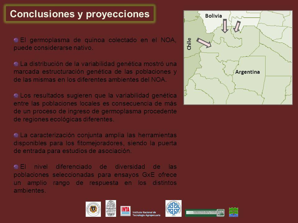 Conclusiones y proyecciones Argentina Bolivia Chile El germoplasma de quinoa colectado en el NOA, puede considerarse nativo. La distribución de la var