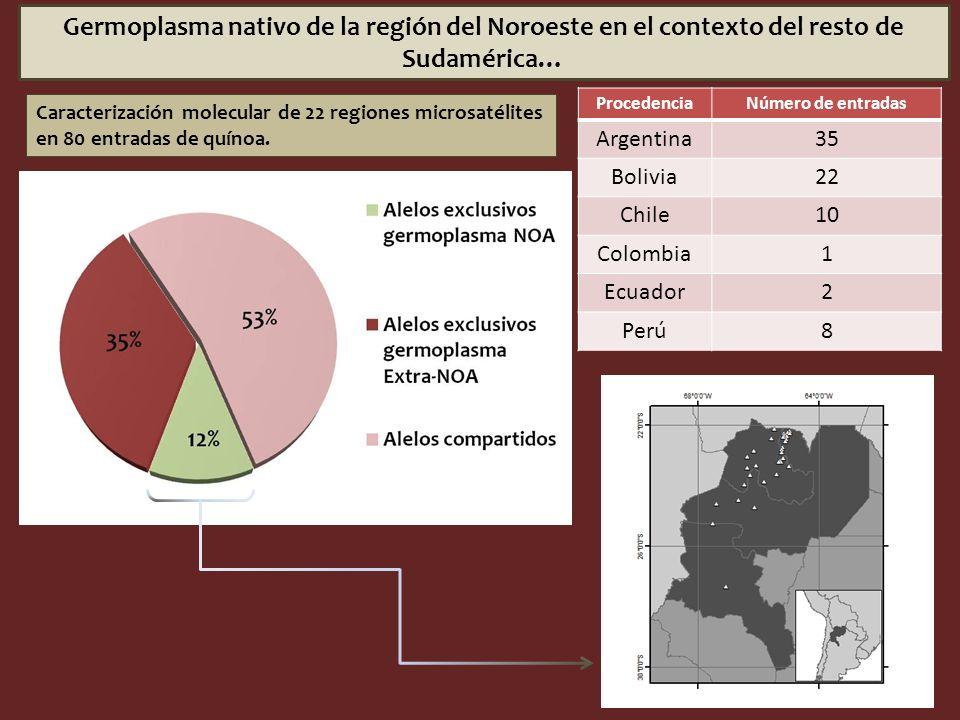 Germoplasma nativo de la región del Noroeste en el contexto del resto de Sudamérica… Caracterización molecular de 22 regiones microsatélites en 80 ent
