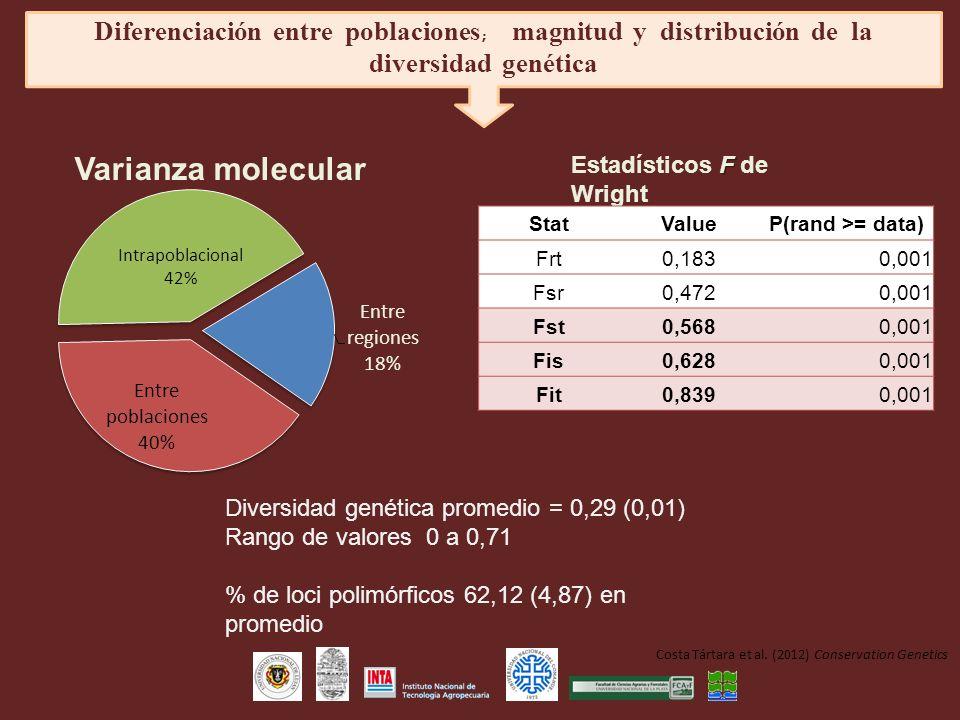 F Estadísticos F de Wright StatValueP(rand >= data) Frt0,1830,001 Fsr0,4720,001 Fst0,5680,001 Fis0,6280,001 Fit0,8390,001 Diversidad genética promedio