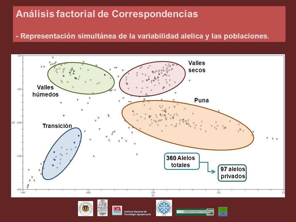 Transición Valles húmedos Valles secos Puna Análisis factorial de Correspondencias - Representación simultánea de la variabilidad alelica y las poblac