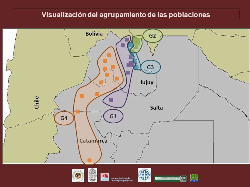 Visualización del agrupamiento de las poblaciones Chile Bolivia Salta Jujuy Catamarca G3 G2 G1 G4