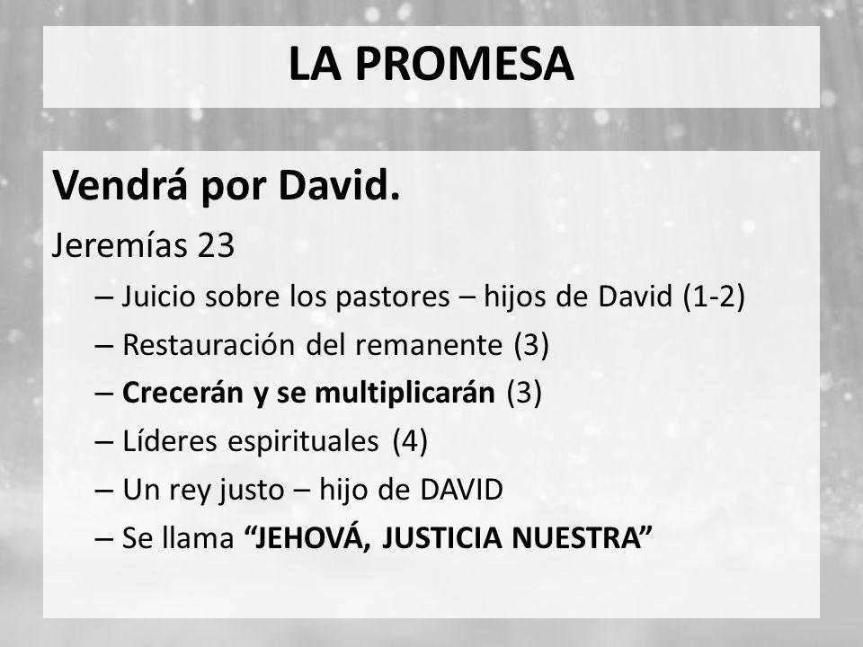 LA PROMESA Vendrá por David. Jeremías 23 – Juicio sobre los pastores – hijos de David (1-2) – Restauración del remanente (3) – Crecerán y se multiplic