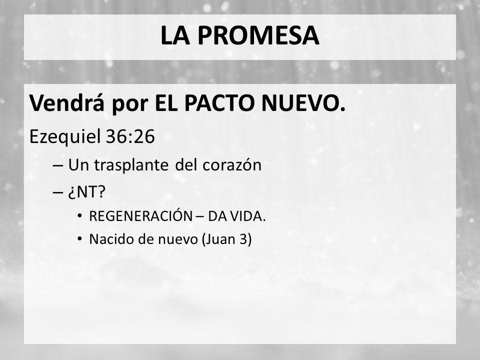 LA PROMESA Vendrá por EL PACTO NUEVO. Ezequiel 36:26 – Un trasplante del corazón – ¿NT? REGENERACIÓN – DA VIDA. Nacido de nuevo (Juan 3)