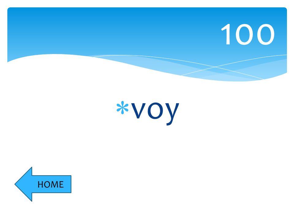 voy 100 HOME