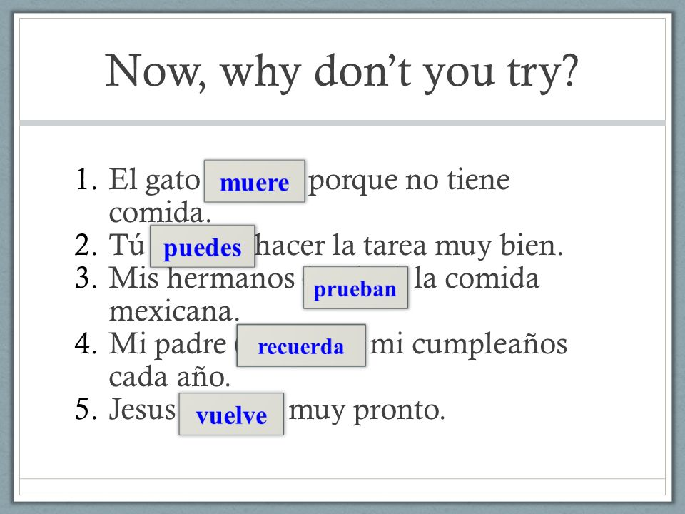 Now, why dont you try? 1.El gato (morir) porque no tiene comida. 2.Tú (poder) hacer la tarea muy bien. 3.Mis hermanos (probar) la comida mexicana. 4.M