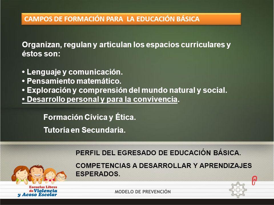 CAMPOS DE FORMACIÓN PARA LA EDUCACIÓN BÁSICA Organizan, regulan y articulan los espacios curriculares y éstos son: Lenguaje y comunicación. Pensamient