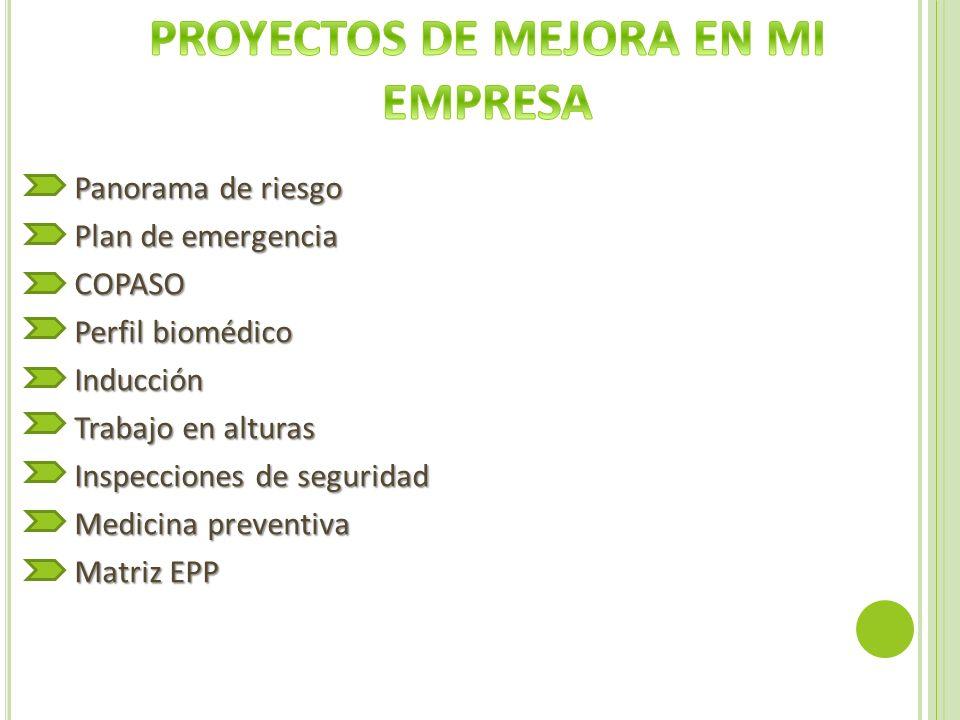 Panorama de riesgo Plan de emergencia COPASO Perfil biomédico Inducción Trabajo en alturas Inspecciones de seguridad Medicina preventiva Matriz EPP