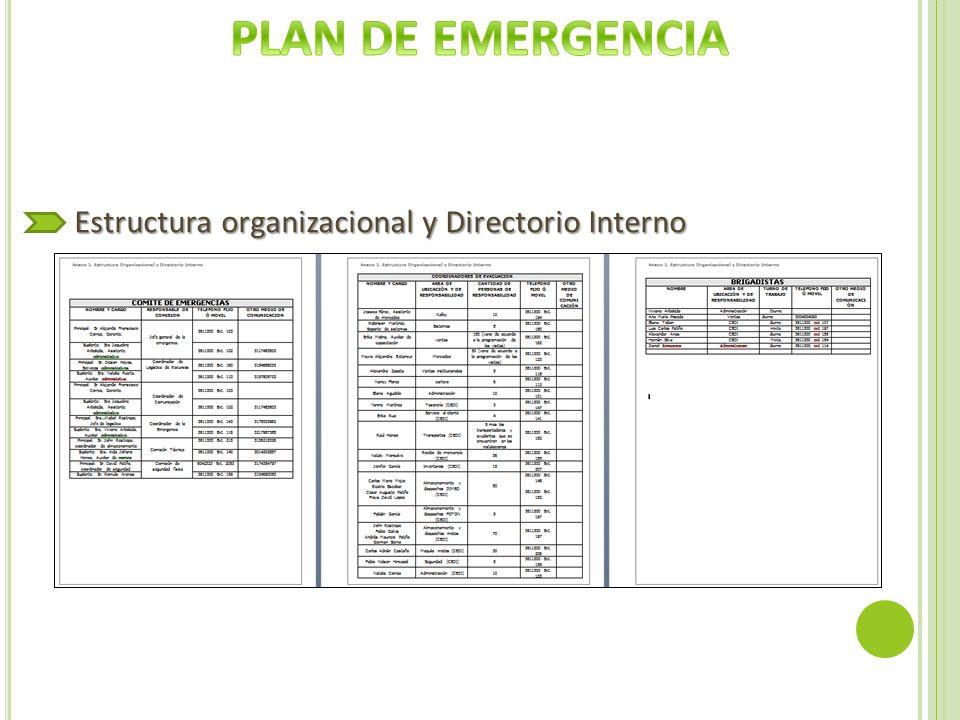 Estructura organizacional y Directorio Interno