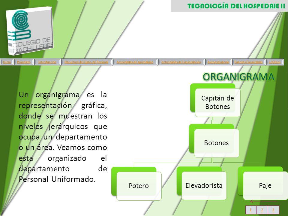 Capitán de Botones BotonesPoteroElevadoristaPaje Un organigrama es la representación gráfica, donde se muestran los niveles jerárquicos que ocupa un d