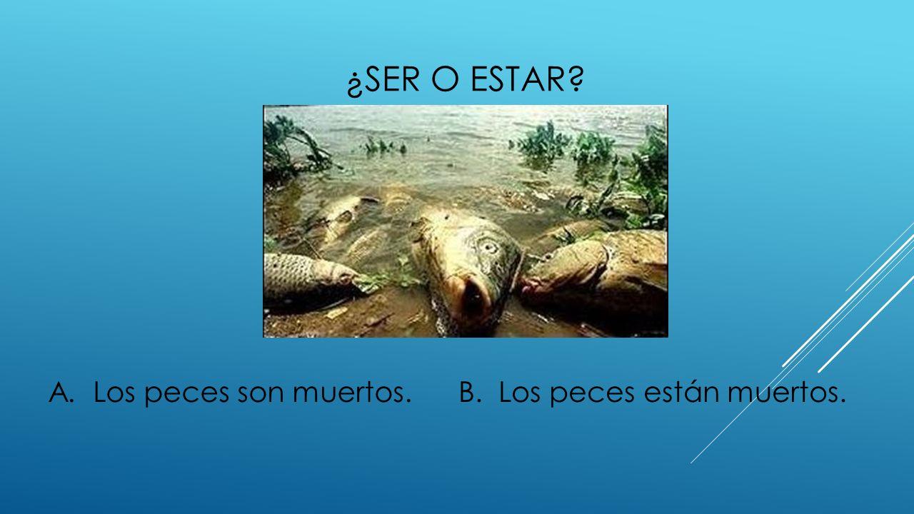 ¿SER O ESTAR? A. Los peces son muertos.B. Los peces están muertos.