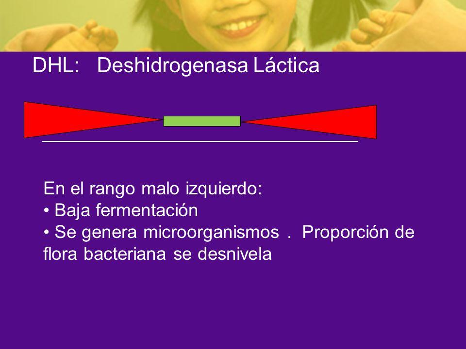 DHL: Deshidrogenasa Láctica En el rango malo izquierdo: Baja fermentación Se genera microorganismos. Proporción de flora bacteriana se desnivela