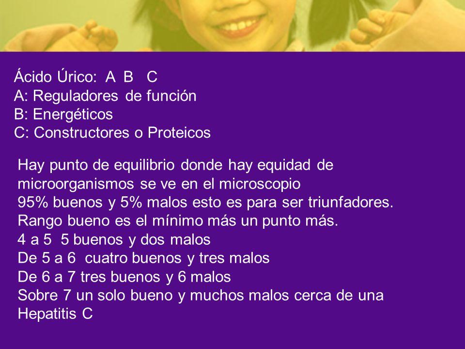 Ácido Úrico: A B C A: Reguladores de función B: Energéticos C: Constructores o Proteicos Hay punto de equilibrio donde hay equidad de microorganismos