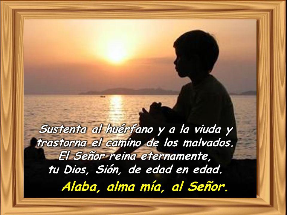 Alaba, alma mía, al Señor.