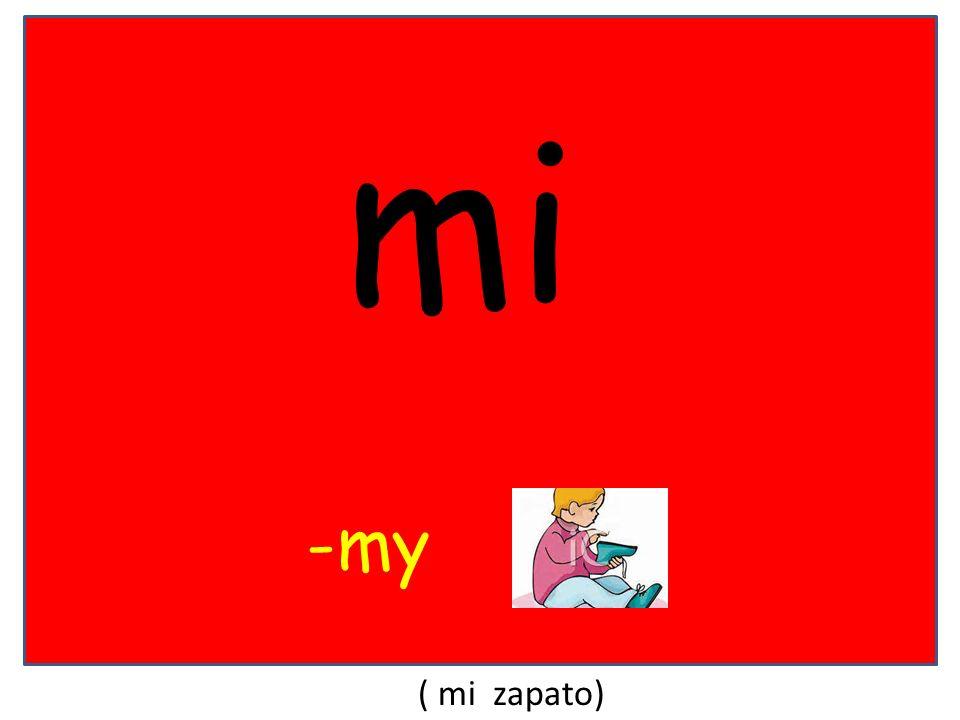 mi -my ( mi zapato)