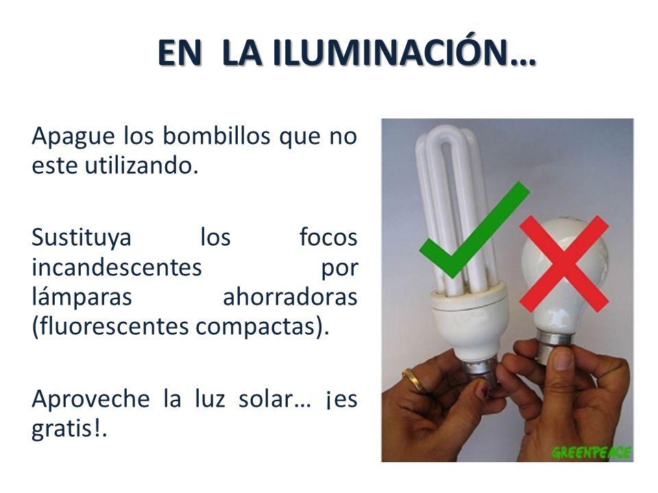 EN LA ILUMINACIÓN… Apague los bombillos que no este utilizando.