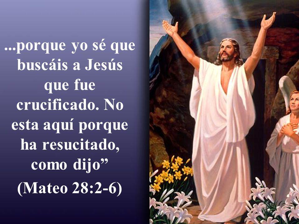 ...porque yo sé que buscáis a Jesús que fue crucificado. No esta aquí porque ha resucitado, como dijo (Mateo 28:2-6)