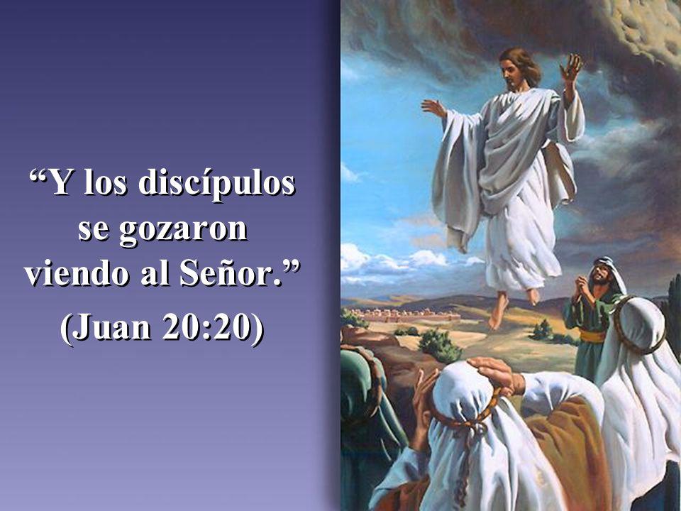 Y los discípulos se gozaron viendo al Señor. (Juan 20:20) Y los discípulos se gozaron viendo al Señor. (Juan 20:20)